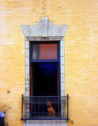 Distant Window photo by Jimmy Peggie