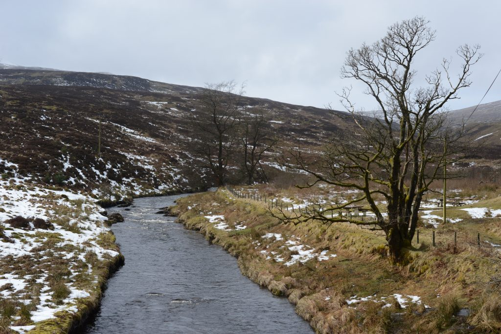 Mountain Stream - Scotland - photo by Jimmy Peggie