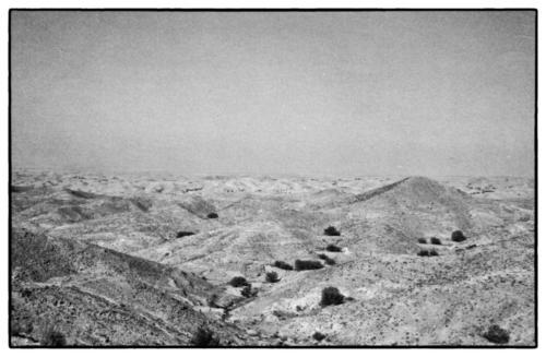 Sahara Desert 1982
